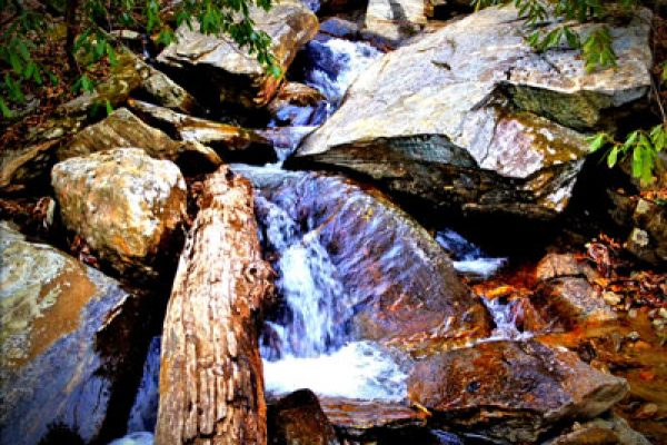 Gully Creek Trail-Cumberland Knob-Blue Ridge Parkway-Milepost 217.5