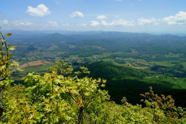 Mount Jefferson State Park Hiking Trails-Ashe County-West Jefferson, NC