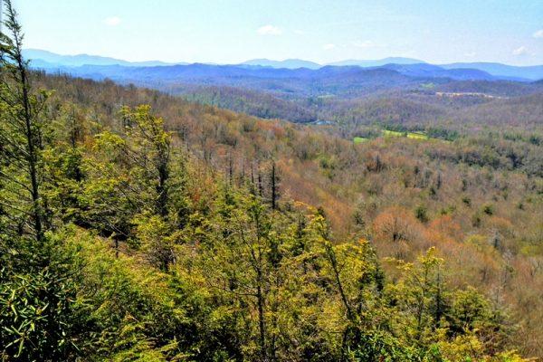 Flat Rock Trail-Blue Ridge Parkway-Milepost 308