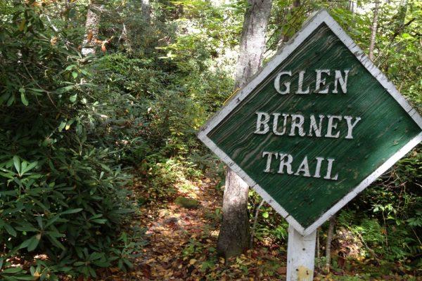 Glen Burney Trail-Blowing Rock NC Waterfalls
