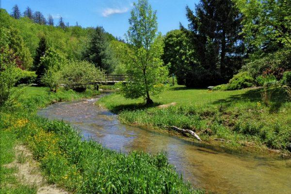 Tate Evans Park-Elk Creek-Banner Elk NC