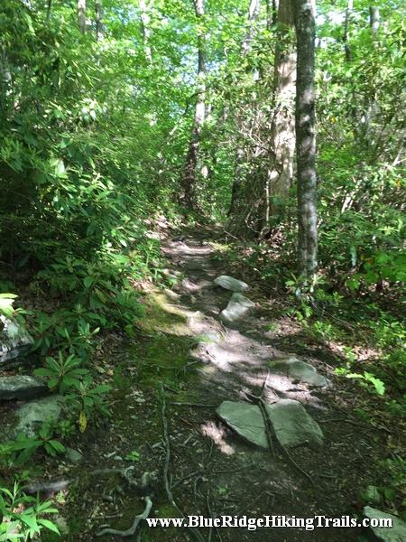 Stack Rock Overlook Blue Ridge Parkway Milepost 304 8