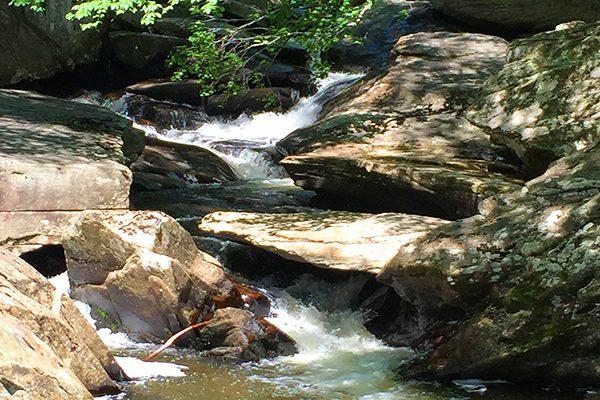 Boone Fork Trail-Blue Ridge Parkway-Milepost 296.5