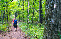 Blue Ridge Mountains Long Distance Hiking Trails